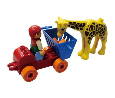 TMT体育-动物欢乐世界 长颈鹿